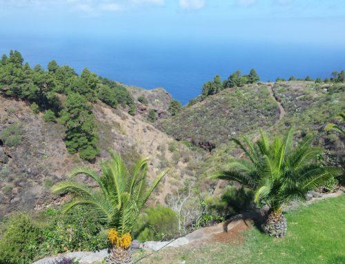 La Palma, eine Intitiationsreise